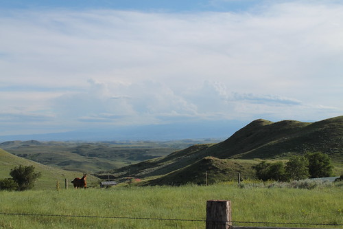 Looking towards the Bighorns