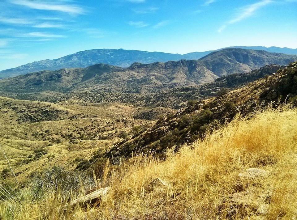 1310 Molino Basin to Agua Caliente Hill Trailhead