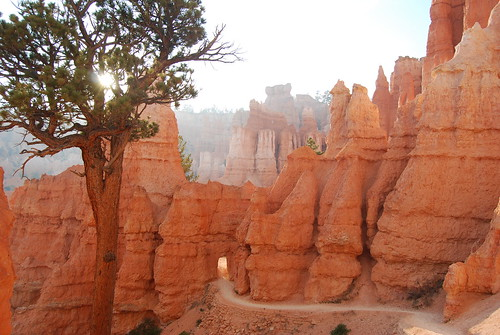 door in the wall at Bryce Canyon