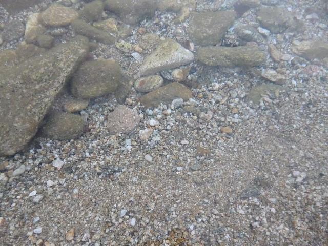 Mykonos's clear sea water