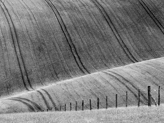 Downland fence