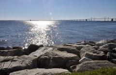 Photo of Chesapeake Bay from shoreline