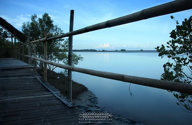 Bakhawan Eco-Park & Research Centre Mangroves Kalibo Aklan