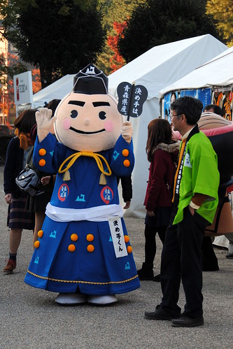 Fall Nagoyajo 210r