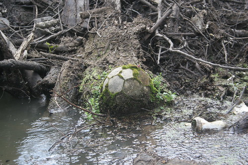 Mossy Soccer Ball