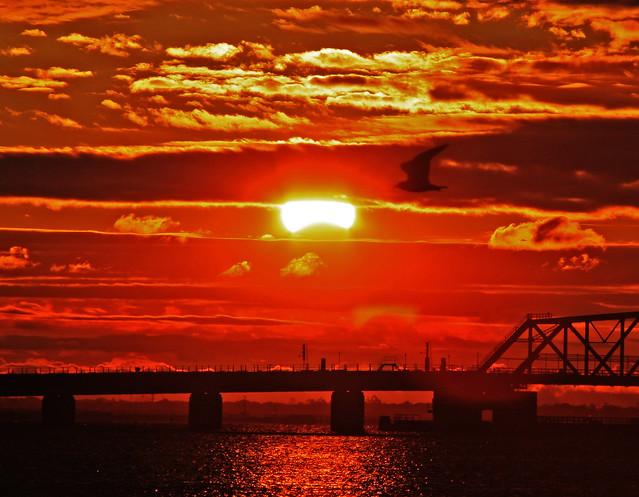 Solar_eclipse_New_York_JFK_November3_2013_IMG_2615 copy