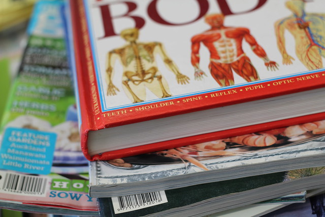 Tuesday: Body book at the Counsellor's office