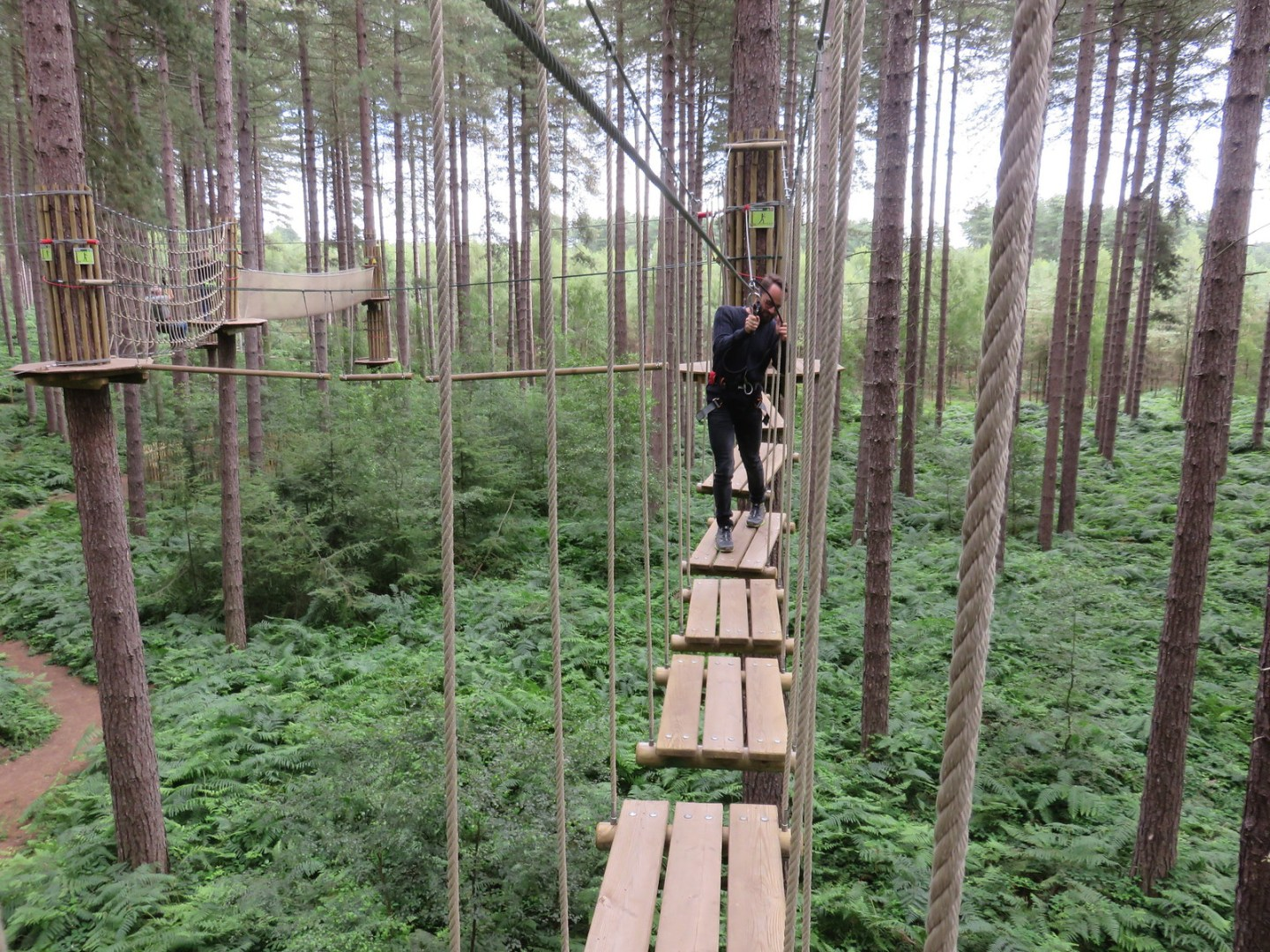 Go Ape Tree Top Adventure (B)