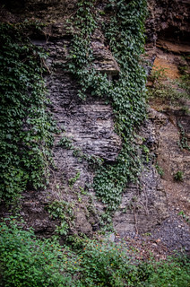 New River Gorge-54