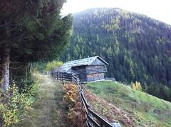 Neuhütte, Alm