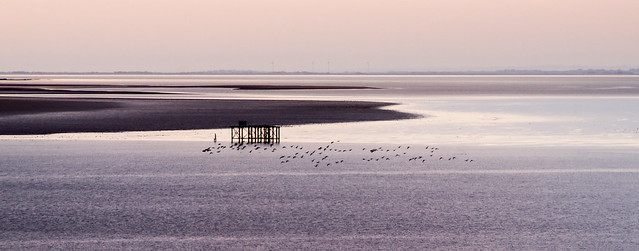 Solway Firth at dusk