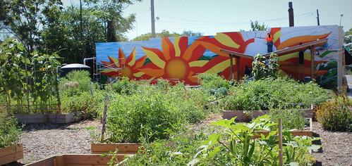 20130824. Fall Creek Gardens' sunflower mural.