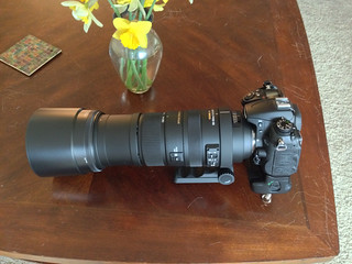 New lens - Sigma 150-500mm