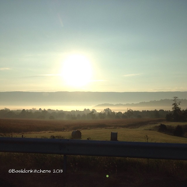 Nov 11 - a memory {if you could see it; this is what a memory looks like to me} #fmsphotoaday #amemory #thoughts #sunrise #mist #valley #driving