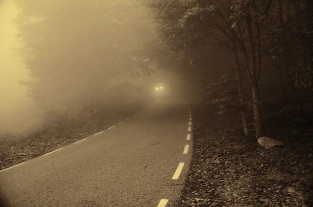 La Niebla.-