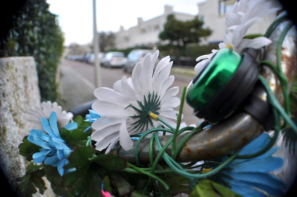 Fleurs Pastiques et Guidon 2