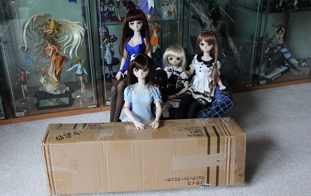 Volks Dollfie Dream Alice Kuonji Arrives