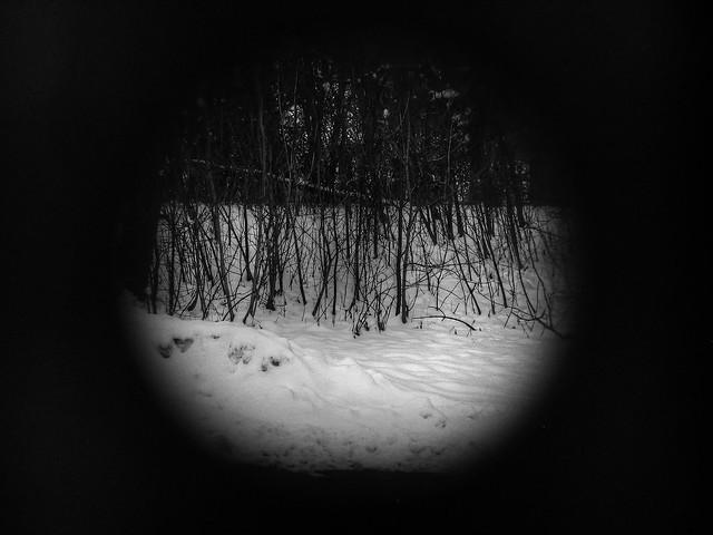 tiny winter landscape