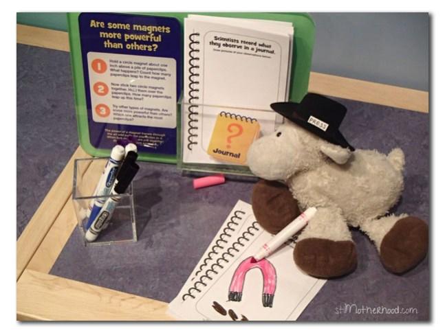 Lamb make a science journal