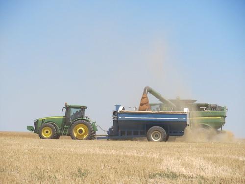 Z Crew: Dumping on the Grain Cart