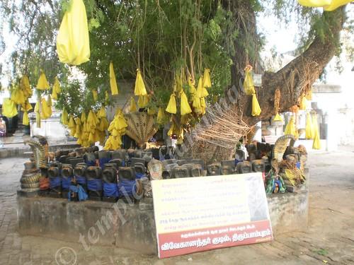 Sthala Vruksham, Thirupampuram