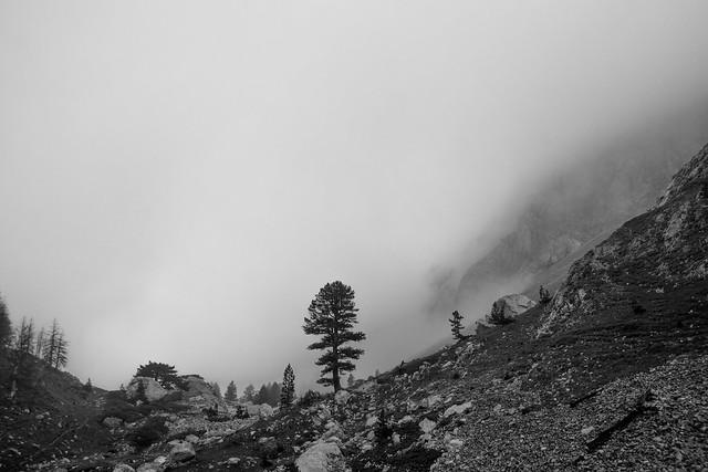 Mt. Komovi