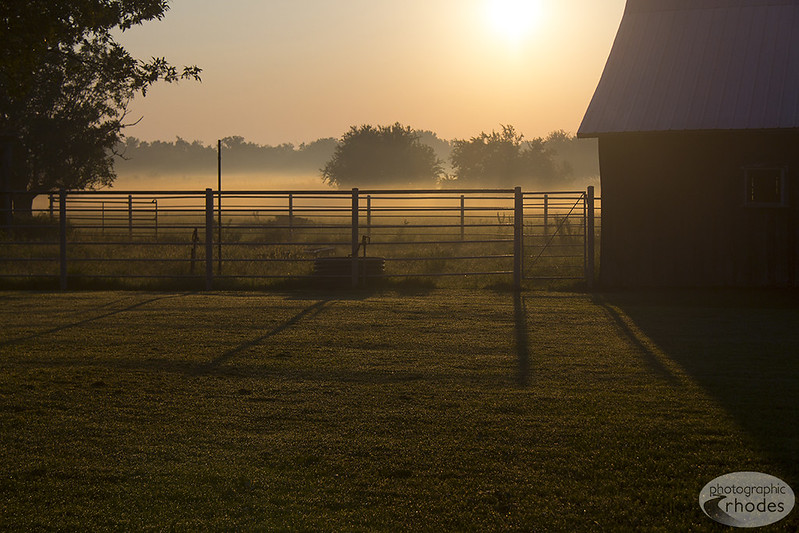 Photo of the Day: Country Morning Fog