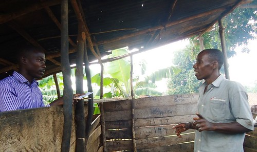 Peter Ssentumbwe interviewing a village butcher in Mukono District