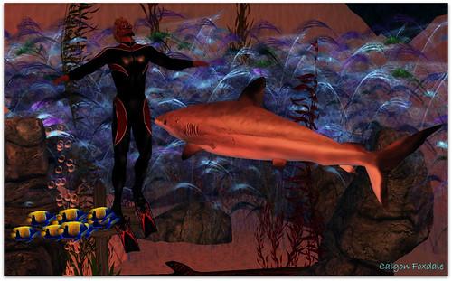 Undersea2_002