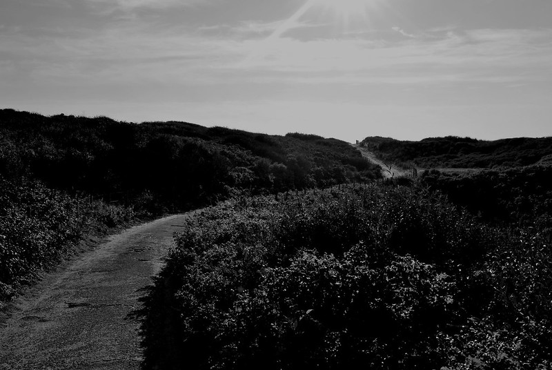 And the roads in the dunes are desolates.