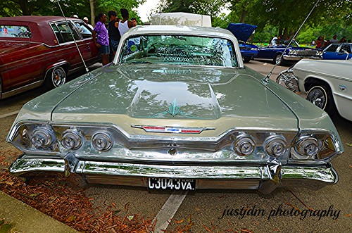 SHADE OF BROWN IMPALA   (11)