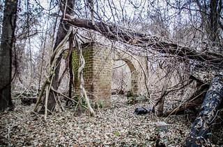 Glenn Springs Ruins
