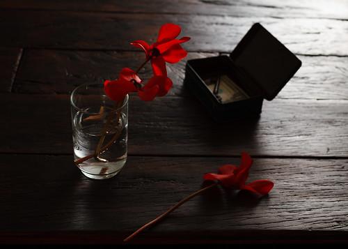 Table .b. by Luiz L.