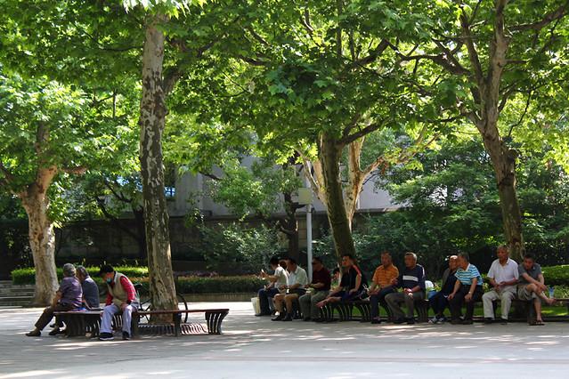 A public park - Shanghai