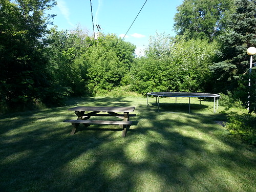 Picnic Table in the Middle of the Yard