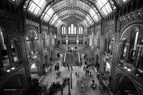London Natural History Museum B&W by MatthewOsbornePhotography_