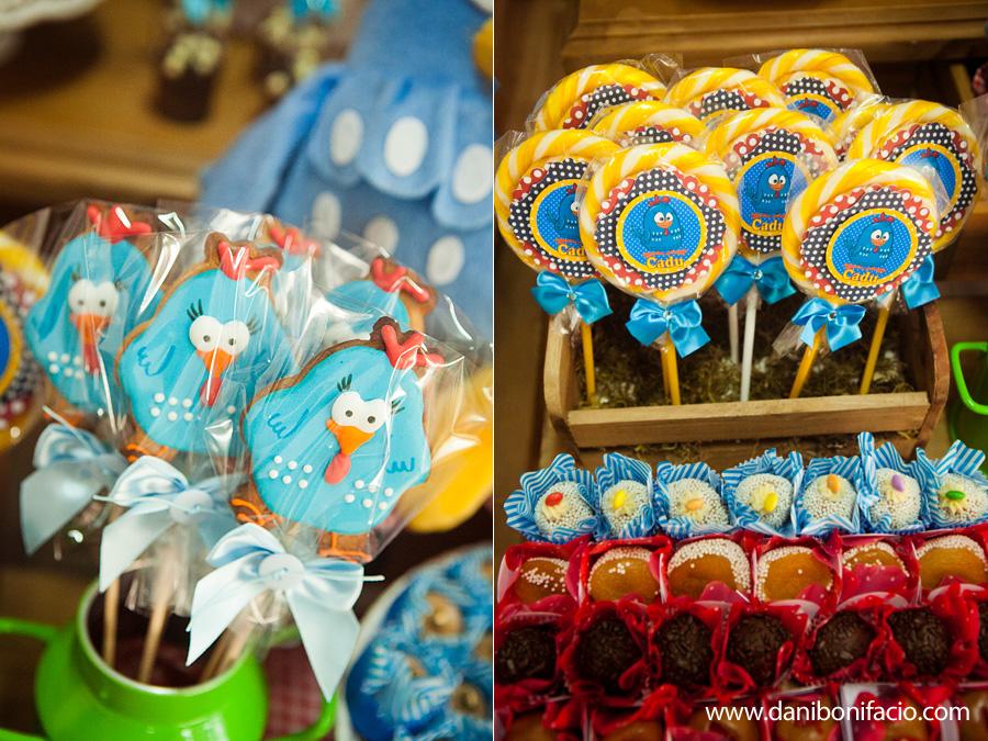 danibonifacio-fotografia-foto-fotografo-fotografa-aniversario-festa-infantil-3