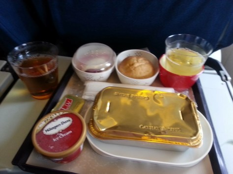 Image result for haagen dazs airline