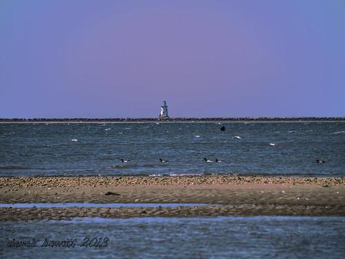 lighthouse by Derek Hewitt Photography