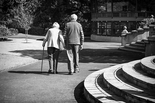 Garden stroll by mjm_nz