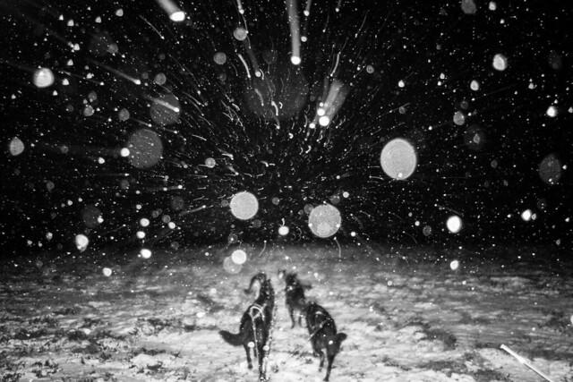 Rare Nome Snow Day