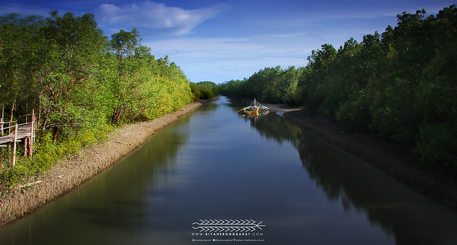 River in Kalibo Bakhawan Eco-park and research centre aklan mangrove