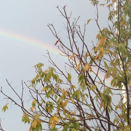 October Rainbow