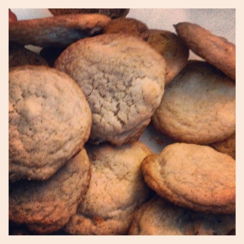 #this_happened #cookies get #nommed #pl365 #projectlife365 #projectlife2013 #project_life