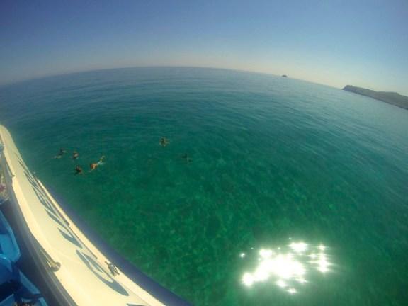 Boat Alcudia to Cala Ratjada