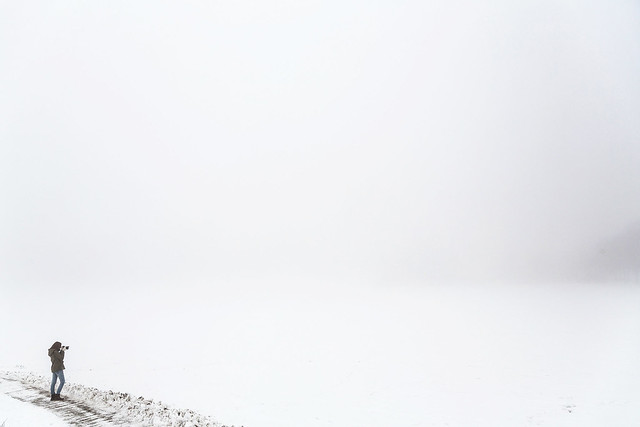 Tåke på Bygdøy #03