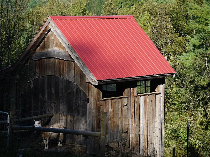 Westie's Barn