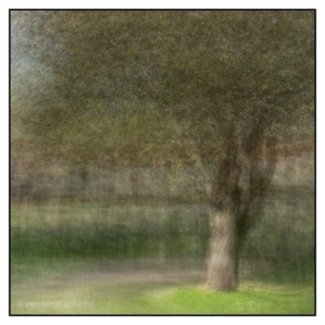 20140312-20140312-_DSC3134-Edit.jpg