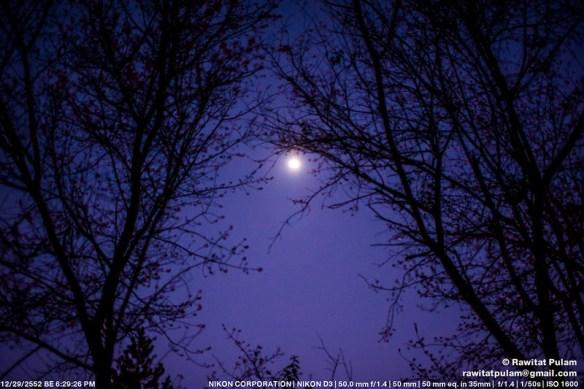 Moonlight Sonata, 1st Movement