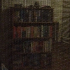 Bookshelf Reflection